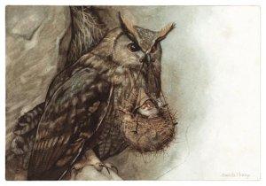 Hibou au Panier, carte postale de Jean-Baptiste Monge