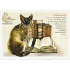 Carte Postale Chaerazade Chats Enchantés illustré par Séverine Pineaux