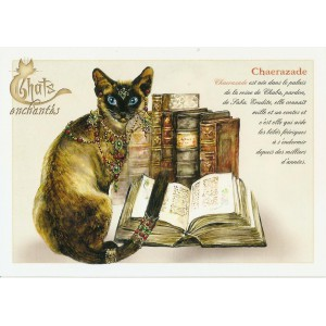 Carte postale Chaerazade de Séverine Pineaux