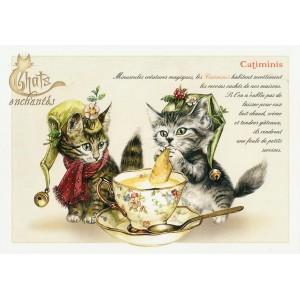 Carte postale Catiminis de Séverine Pineaux