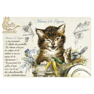 Carte postale Matou-t'à-l'égout de Séverine Pineaux