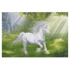 Carte postale Licorne dans la clairière de Sandrine Gestin