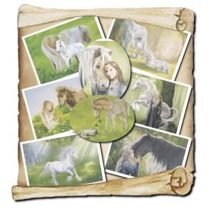 Lot de 8 cartes postales de Sandrine Gestin