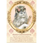 Marie-Chatounette, Carte postale de Séverine Pineaux – Les Histochats