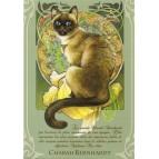 Charah Bernhardt, Carte postale de Séverine Pineaux – Les Histochats