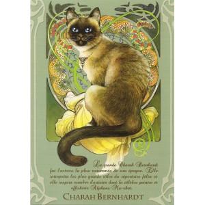 Charah Bernhardt, Carte postale de Séverine Pineaux - Les Histochats