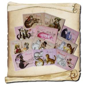 12 cartes postales Chats de Paris de Séverine Pineaux