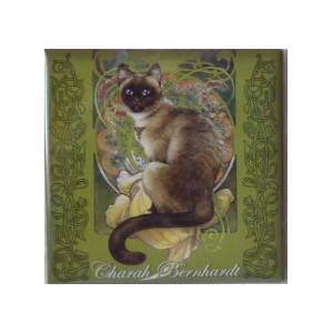 Magnet de chat de Séverine Pineaux, Charah Bernhardt, aimant décoratif des Histochats