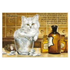 Carte postale de chat de Séverine Pineaux, Chaspirine, coll. Chats enchantés 2014