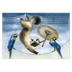 Carte postale de chat de Séverine Pineaux, Chacrobate, coll. Chats enchantés 2014