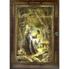 Merveilles et Légendes de Brocéliande de Xavier Husson, un livre de contes et légendes de Bretagne