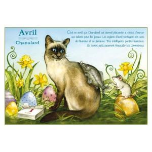 Carte postale de chat de Séverine Pineaux, mois d'Avril, Chanulard