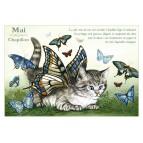 Carte postale de chat de Séverine Pineaux, mois de Mai, Chapillon