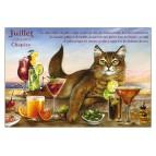 Carte postale de chat de Séverine Pineaux, mois de Juillet, Chapéro