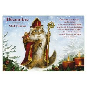 Carte postale de chat de Séverine Pineaux, mois de Décembre, Chat Nicolas