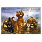 Carte postale de chat de Séverine Pineaux, mois de Novembre, Cat O'Lantern