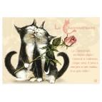Carte postale de chat de Séverine Pineaux, Channiversaire mod. 3