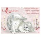 Carte postale de chat de Séverine Pineaux, Channiversaire mod. 6