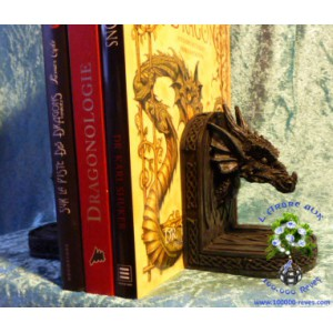 Serre-livres Tête de dragons à entrelacs celtiques