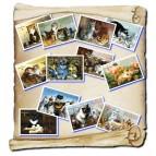12 cartes postales de chats «Métiers des chats» de Séverine Pineaux, éd. Au Bord des Continents...