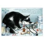 Matoubib, carte postale de chat de Séverine Pineaux. Coll. Métiers des chats, éd. Au Bord des Continents