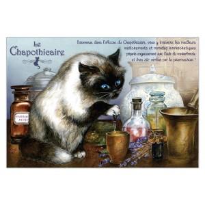 Chapothicaire, carte postale de chat de Séverine Pineaux. Coll. Métiers des chats, éd. Au Bord des Continents