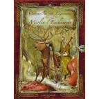 Merveilles et Légendes de Merlin l'enchanteur de Xavier Husson, éd. Au Bord des Continents