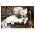 Dorian Minet, carte postale de chat de Séverine Pineaux, coll. Chats de la littérature
