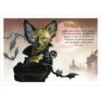 Nosfermatou, carte postale de chat de Séverine Pineaux, coll. Chats de la littérature