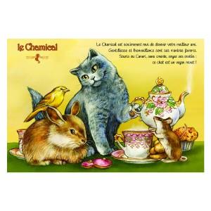 Carte postale de chat de Séverine Pineaux, Le Chamical, coll. Caractère de chat. Editions Au Bord des Continents...