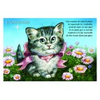 Carte postale de chat de Séverine Pineaux, Le Chadorable, coll. Caractère de chat. Editions Au Bord des Continents...