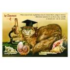 Carte postale de chat de Séverine Pineaux, Le Chavant, coll. Caractère de chat. Editions Au Bord des Continents...