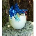 Bébé dragon bleu, un mini dragon dans son œuf