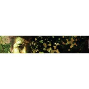 Sheena, marque page original de Christophe Dougnac, coll. AmuseZ