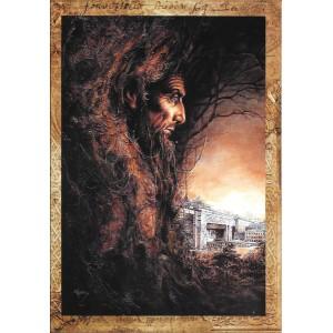 Merlin, carte postale féerique de Séverine Pineaux, coll. Ysambre
