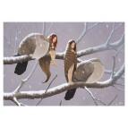 Carte postale «Les fées et les oiseaux», carte postale féerique de Erlé Ferronnière