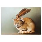 Carte postale «La fée sur le chat roux», carte postale féerique de Erlé Ferronnière