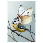 Carte postale «La fée sur la mésange bleue», carte postale féerique de Erlé Ferronnière