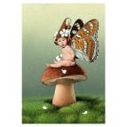Carte postale «Le bébé fée sur un champignon», carte postale féerique de Erlé Ferronnière
