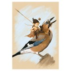 Carte postale « Le pixie sur le geai», carte postale originale de Erlé Ferronnière