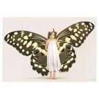 Carte postale «La fée papillon», carte postale originale de Erlé Ferronnière