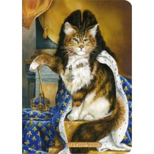 Carnet chat de Séverine Pineaux Le Chat Soleil, collection Histochats des éditions Au Bord des Continents...