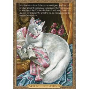 Carte postale de chat historique de Séverine Pineaux, Mme de Chatonpadour - Histochats 2019.
