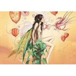 La fée Alkékenge, carte postale féerique de Brucero