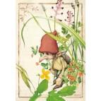Lutin des plantains, carte postale féerique de Brucero