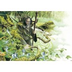 Merlin, la forêt est avec toi, carte postale féerique de Brucero