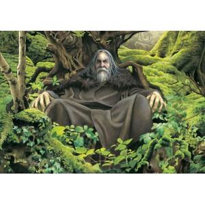 Le trône de Merlin, carte postale féerique de Brucero