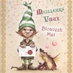 Carte «Meilleurs vœux» de Brucero: lutin messager
