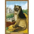Carte postale chat historique de Séverine Pineaux, Ch'Anne de Bretagne – Histochats 2020