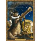 Carte postale chat historique de Séverine Pineaux, Noschadamus – Histochats 2020